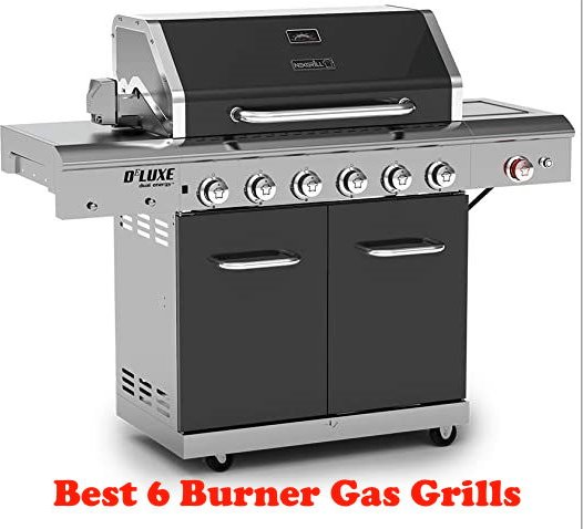 Best 6 Burner Gas Grills