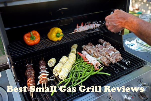 Top 10 Best Small Gas Grill Reviews in 2020